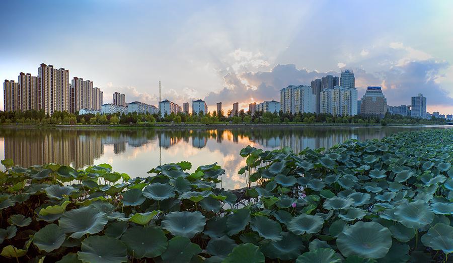 市水利部门先后投资近千万元300余座生态浮岛扮美市区水环境